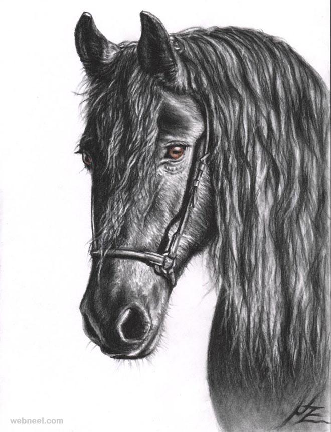 Drawn pug amazing horse Horse Beautiful by Drawings nicolezeug