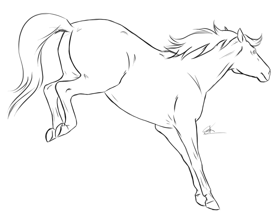 Drawn horse bucking A Bucking Stop look take