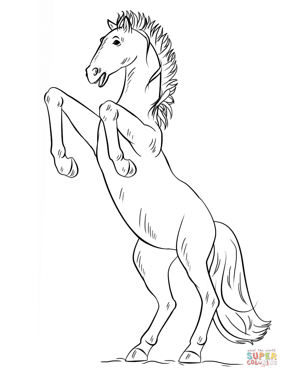 Drawn horse bucking Page Bucking Pages Horse Bucking
