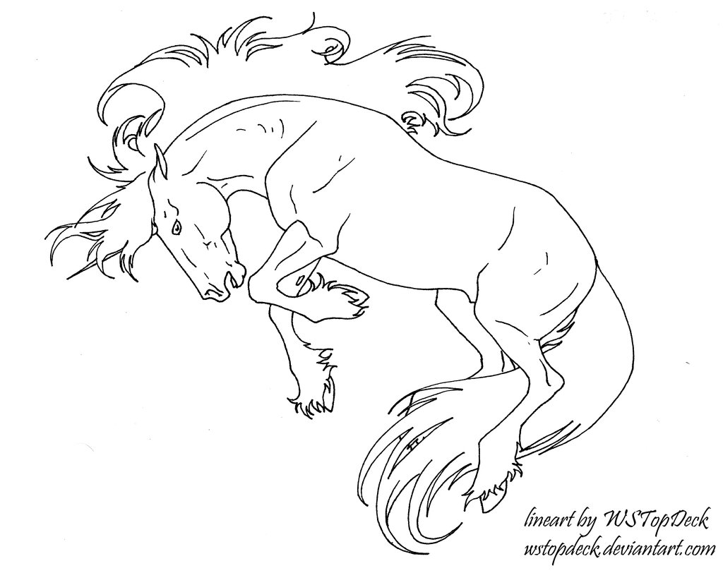 Drawn horse bucking DeviantArt Lines by use Unicorn