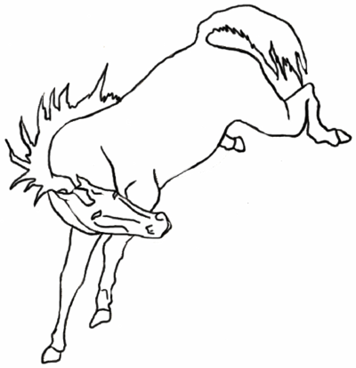 Drawn horse bucking On Bucking Lineart EquineLineart by