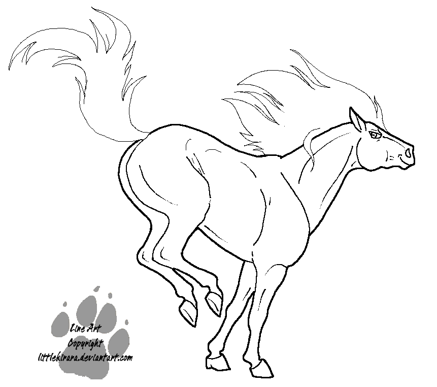 Drawn horse bucking Free  Coloring drawings Images