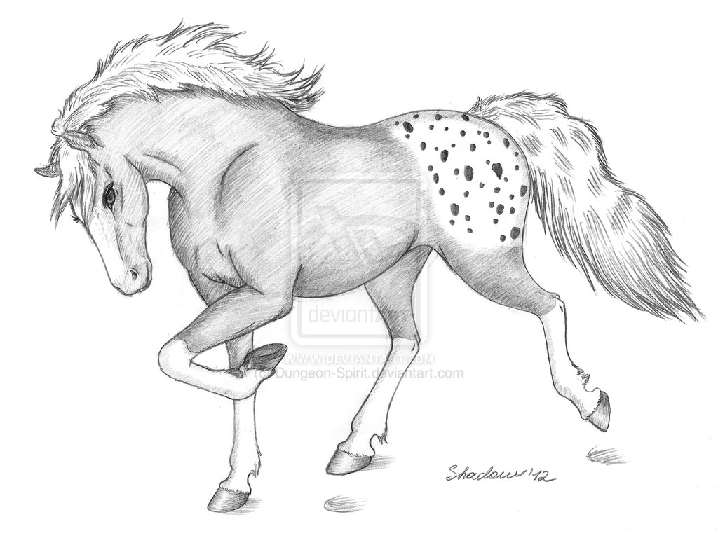 Drawn horse drawed Best 106 drawings Easy Cool