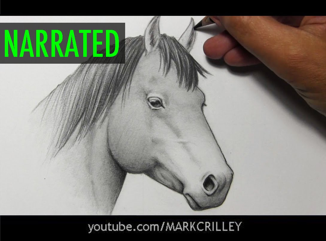 Drawn horse drawed [Narrated Horse by How