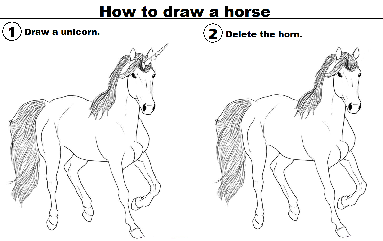 Drawn horse funny  to draw horse How