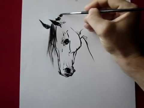 Drawn horse ink drawing A ) horse YouTube TORA