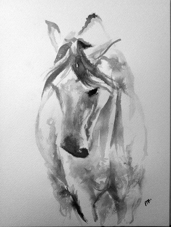 Drawn horse ink drawing ♦ facebook Vegers Mirelle www