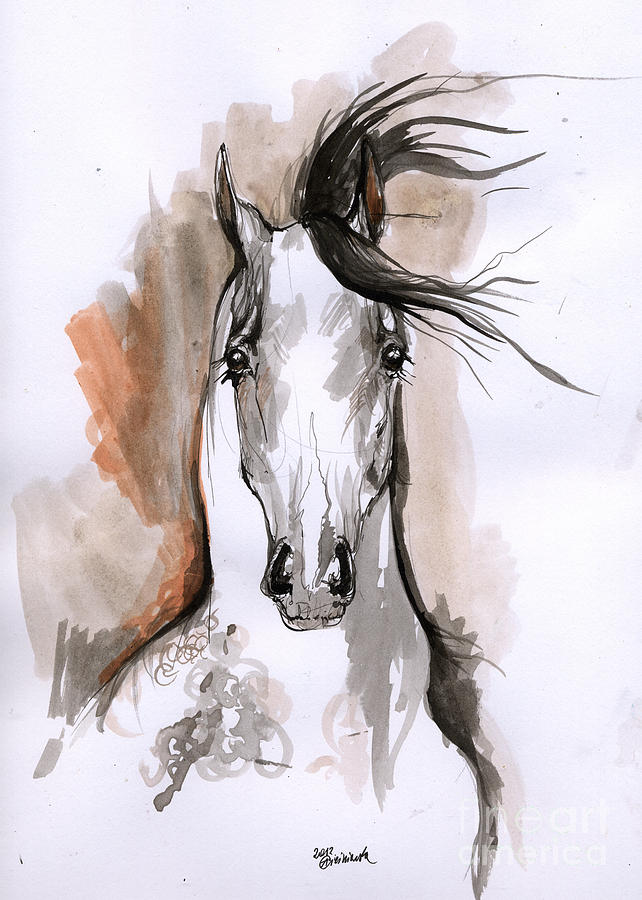 Drawn horse ink drawing Drawing Horse Arabian Ink