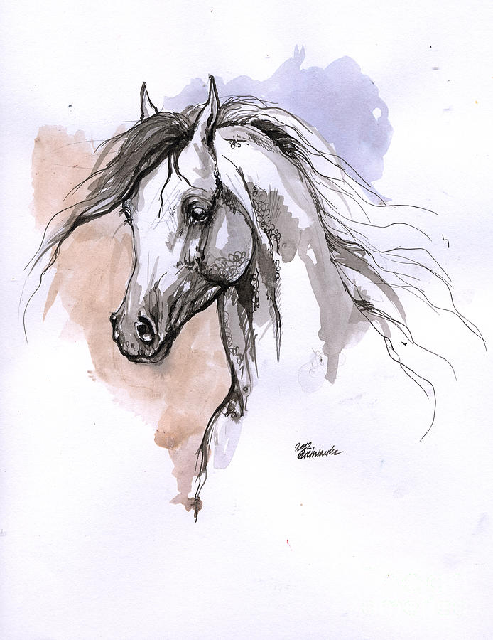 Drawn horse ink drawing Drawing by Ink Arabian Horse