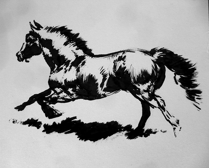 Drawn horse ink drawing Ink Smirtouille Ink DeviantArt Horse
