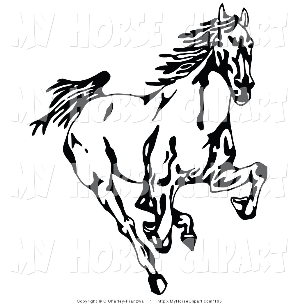 Drawn horse mustang horse ALL Best 1024x1044 Horse A
