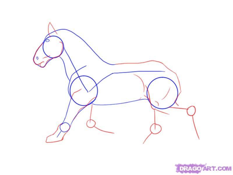 Drawn horse mustang horse A 4 mustang Farm step