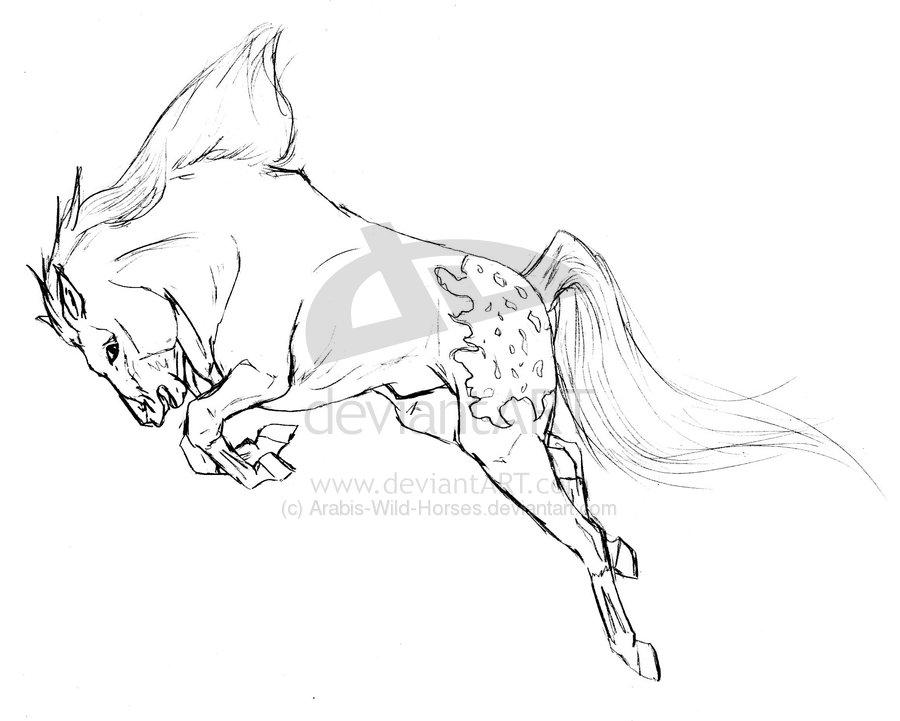 Drawn horse mustang horse Mustang Drawing horse drawing Mustang