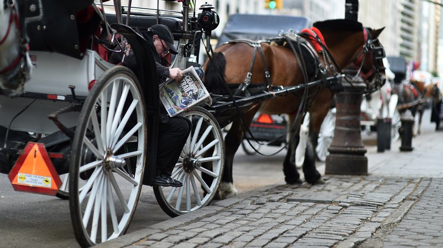 Drawn horse new york New Weigh Carriages Council On