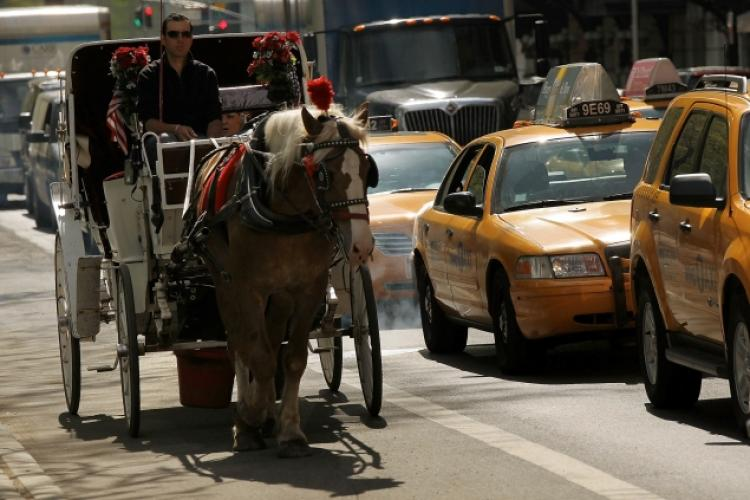 Drawn horse new york Electric to NY motorized keeping