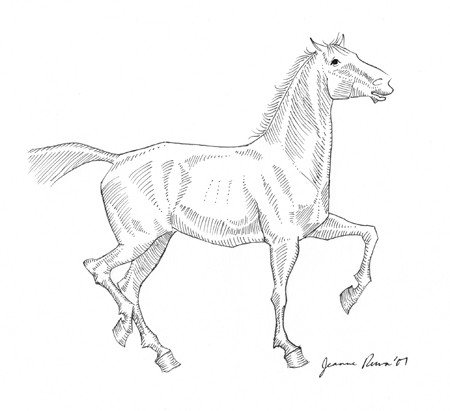 Drawn horse pen Ink ink art & drawing