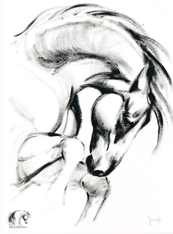 Drawn horse pen Pinterest elise copie on 160