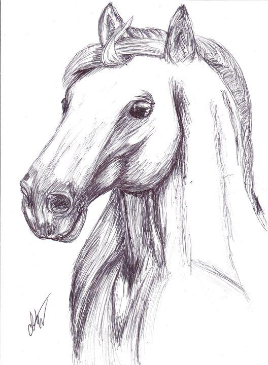 Drawn horse pen Art by Indigo Illustration Animals