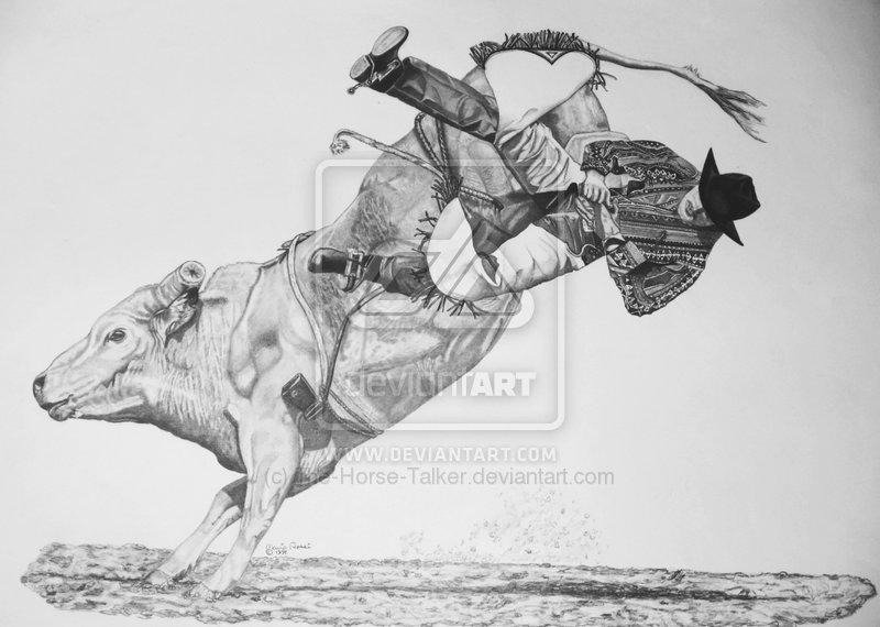 Drawn bull rodeo bull  By On com Drawings