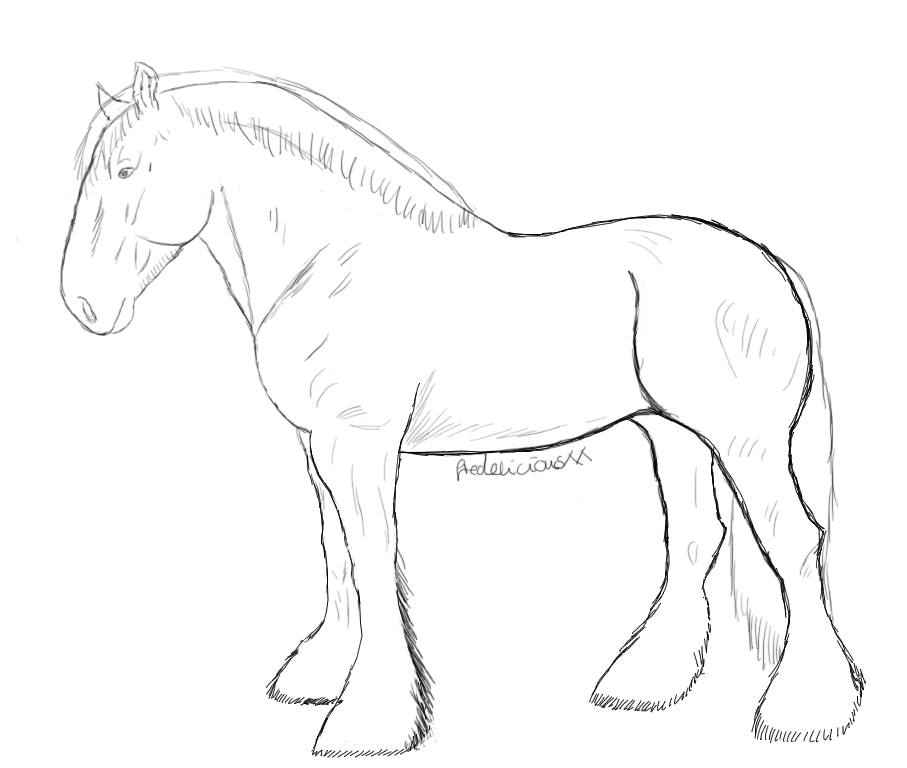 Drawn horse shire horse Horse by by DeviantArt Lineart
