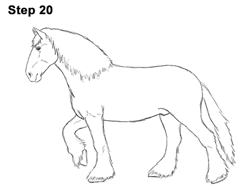 Drawn horse shire horse Horse Shire a or Draw