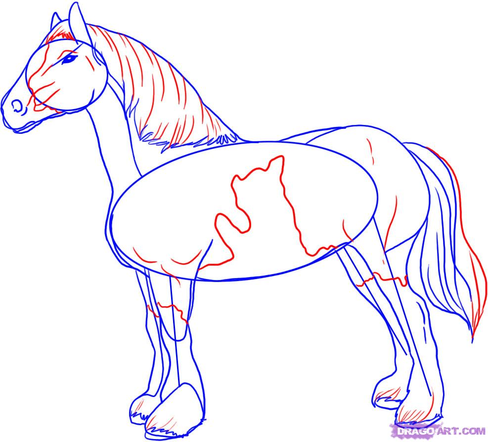 Drawn horse shire horse To a FREE How a