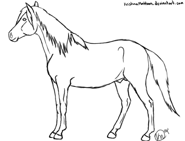 Drawn horse stallion Photo#7 horses Drawings Standing standing