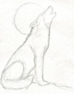Drawn howling wolf 5 how a Step howling