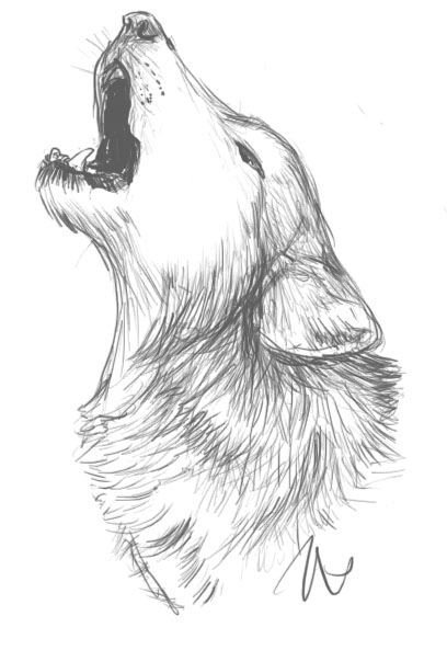 Drawn werewolf different How 10 this Drawing art