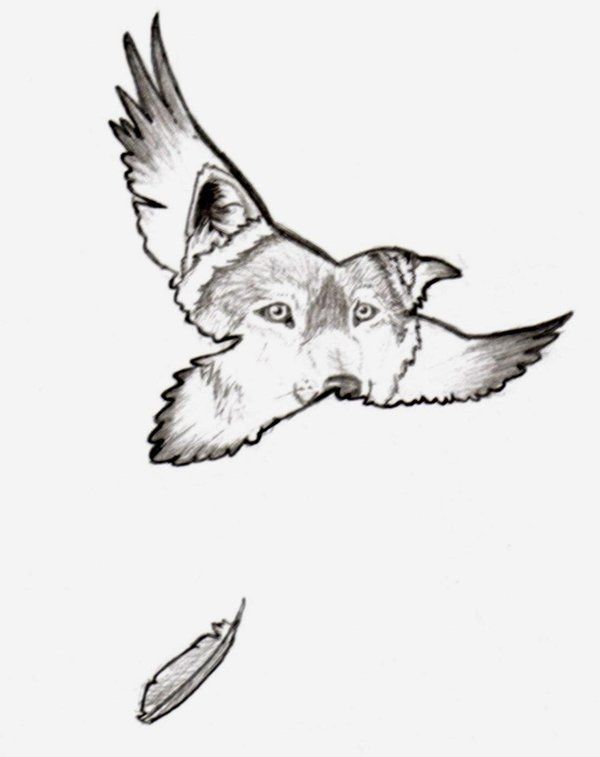 Drawn howling wolf the raven Wolf Raven on images and