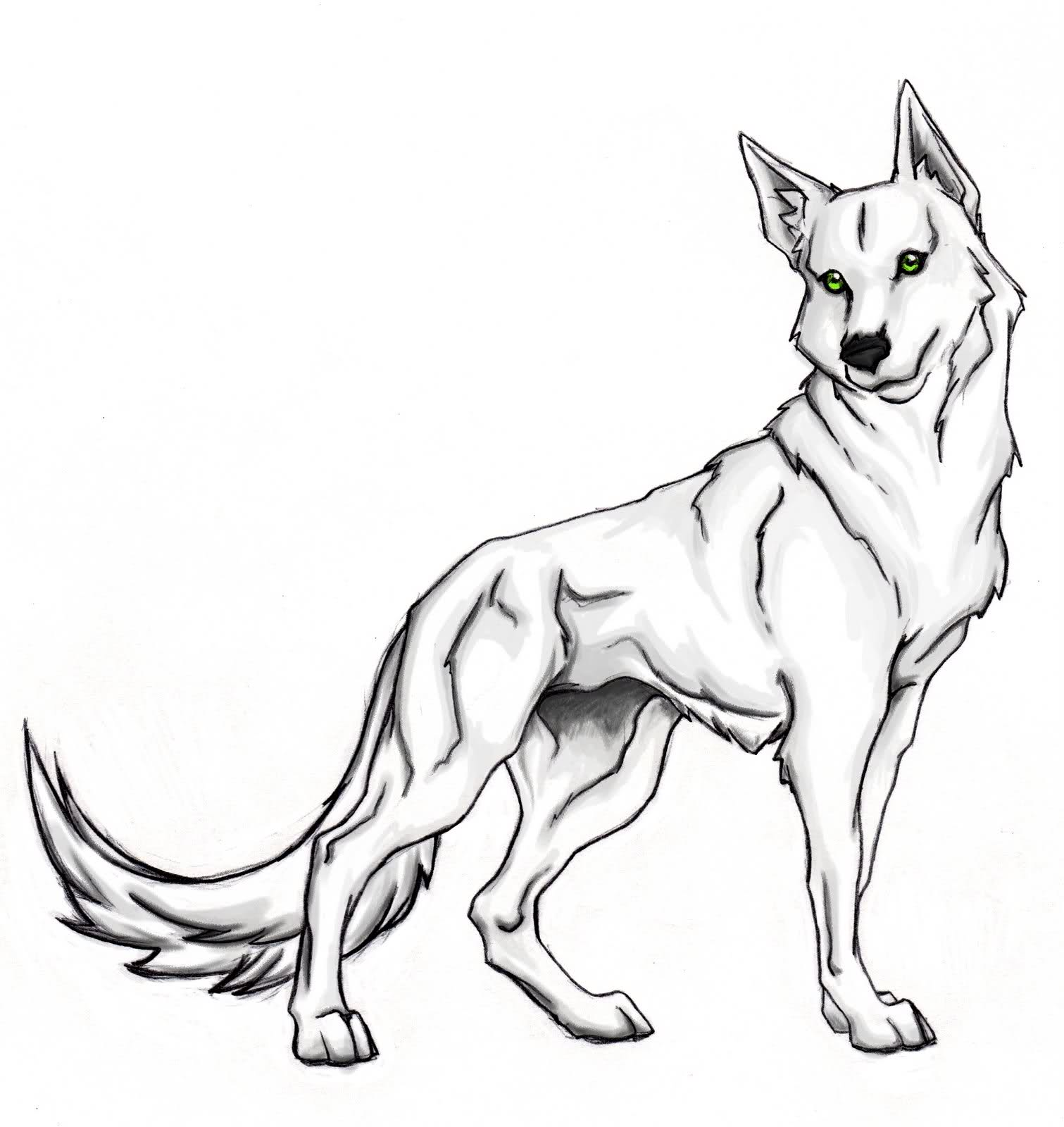 Drawn howling wolf silhouette Colouring howling Page wolf at