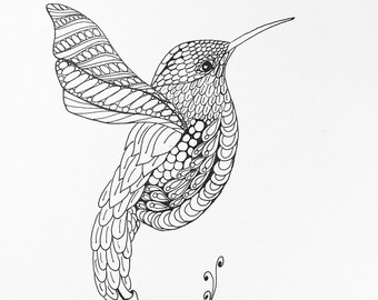 Drawn hummingbird Hummingbird Hummingbird drawing drawing Art
