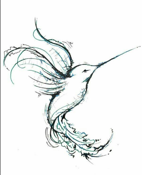 Drawn hummingbird amazing bird Humming bird Hummingbird Beautiful drawing!