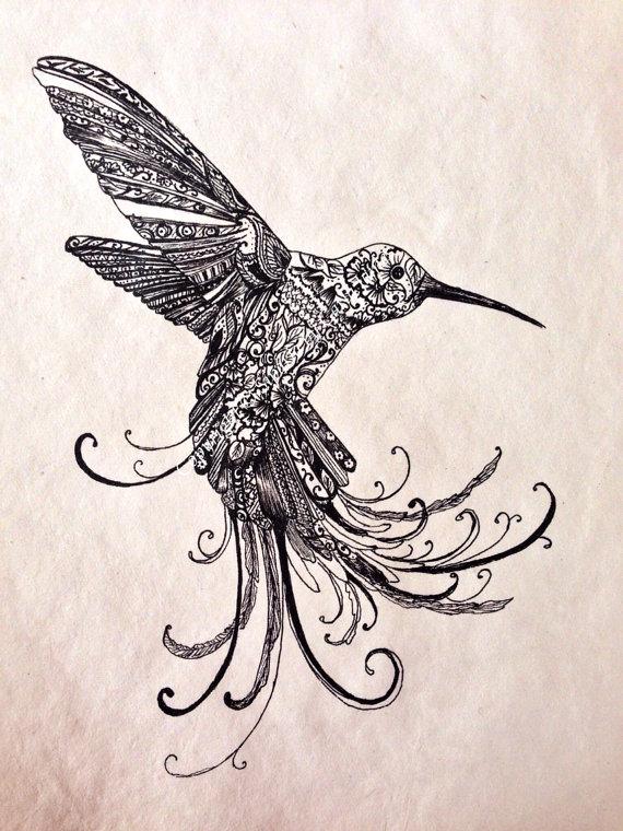 Drawn brds hummingbird £20 birds Bird on Humming