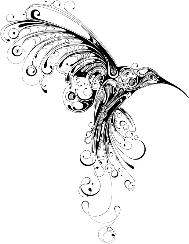 Drawn brds hummingbird Bird: hummingbird Tattoos Of Bird:
