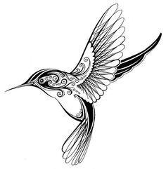 """Drawn hummingbird black and white """"Hummingbird"""" Tattoo Best drawing"""