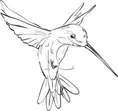 Drawn hummingbird black and white  deviantART simple hummingbird tattoo
