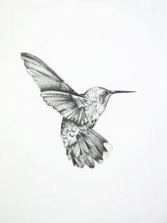 Drawn hummingbird black and white Elizabeth – White This will