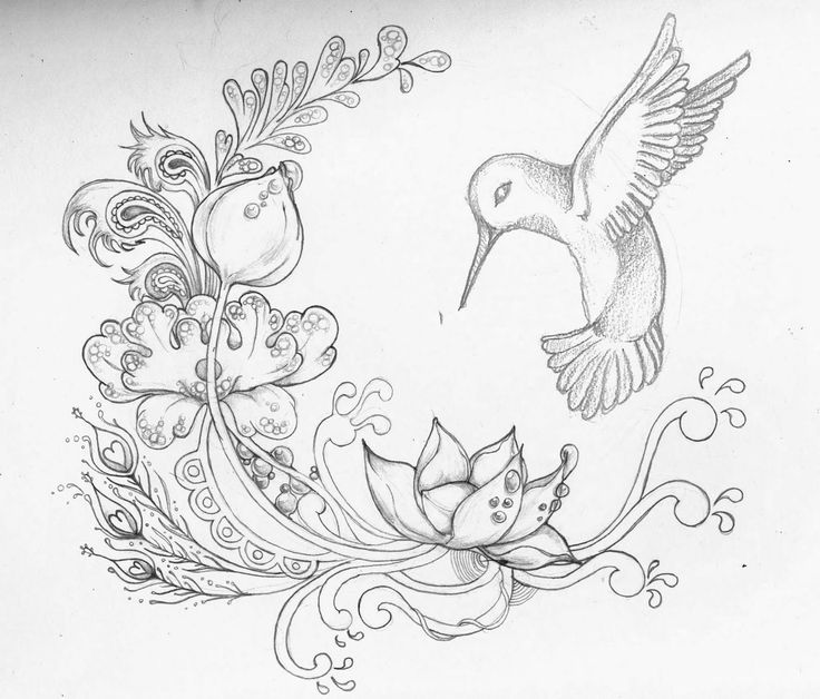 Drawn hummingbird hummingbird flower Www Wolf by Watercolor com/