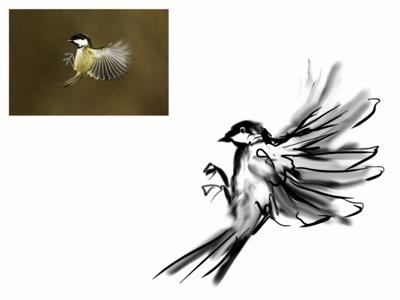 Drawn hummingbird japanese Process The Helpful Art Drawing