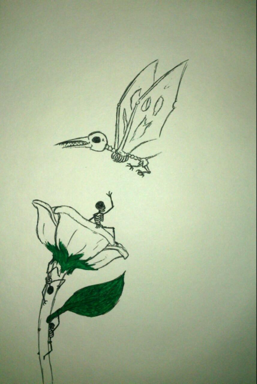 Drawn hummingbird zombie DeviantArt Ants Zombie Ants and