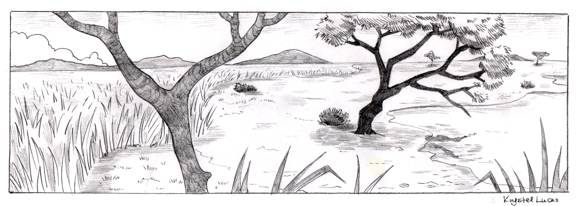 Drawn hunting african savanna Con drawing savannah illustration drawing