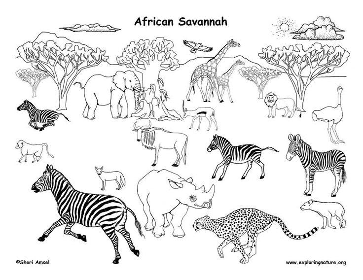Drawn hunting african savanna More Africa on images Savannah