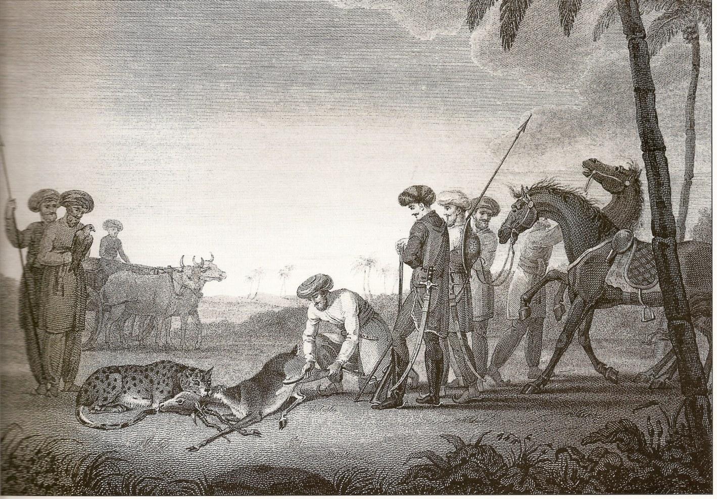 Drawn hunting cheetah Jpg File:CheetahHunt File:CheetahHunt Wikimedia jpg