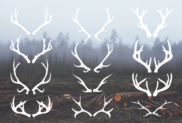 Drawn stag deer antler Drawn art Antlers Drawn Vectors