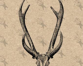 Drawn stag deer antler Printable Deer drawing retro Etsy