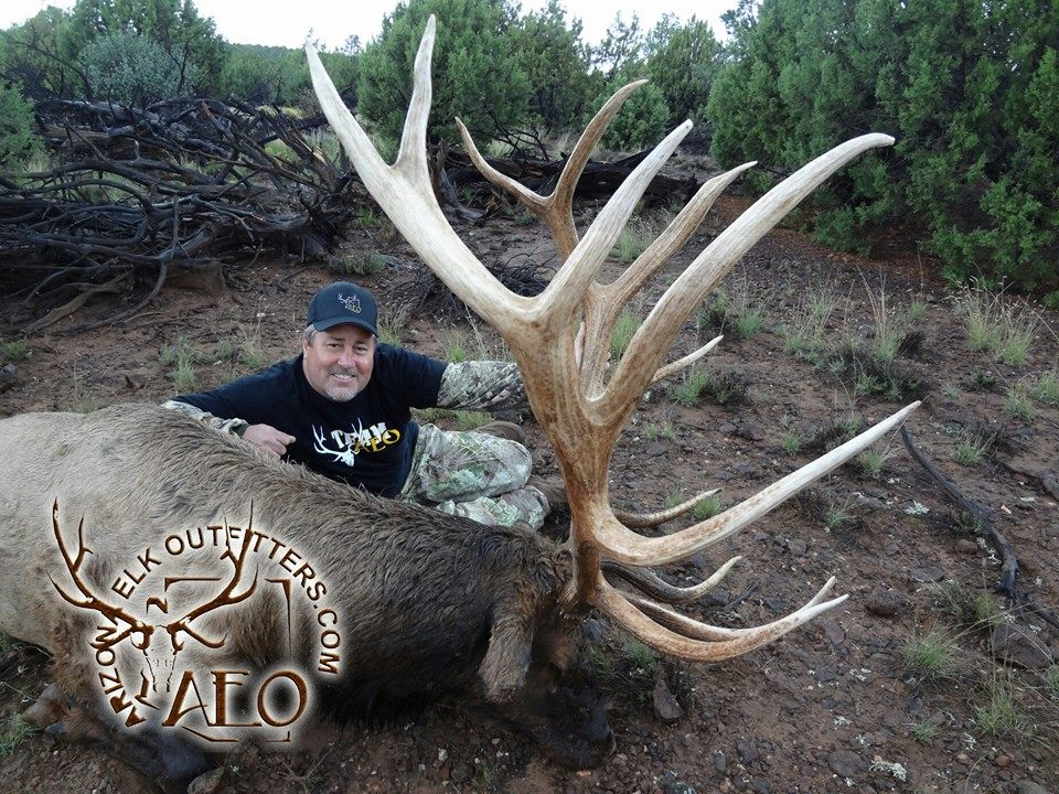 Drawn hunting elk antler Arizona drawing outfitters draw results