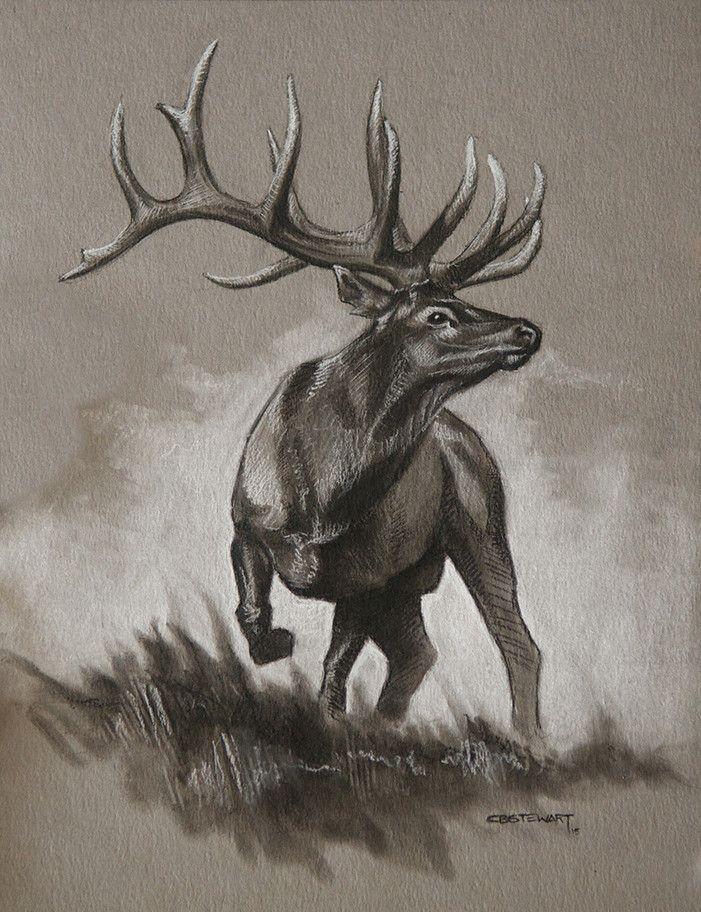 Drawn hunting elk antler On Original Elk tattoo Best