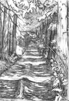 Drawn road pencil drawing Country PENCIL 2000  drawing