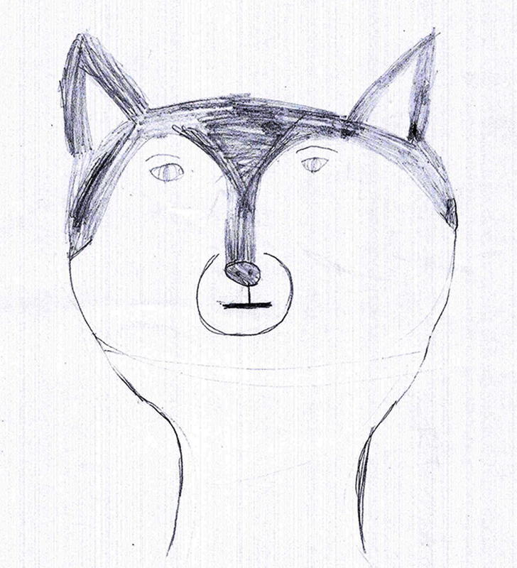 Drawn husky Child  drawing husky by